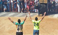Toro del Verdejo en Rueda. Miércoles