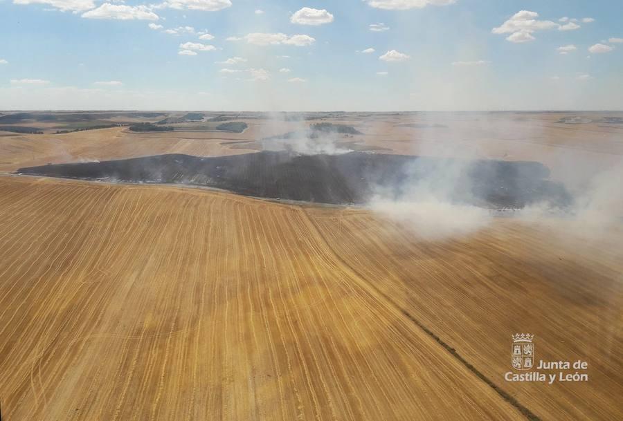 Dos incendios continúan activos en la provincia de Ávila