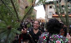 La Pinochada de Vinuesa (Soria)