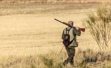 Se abre la media veda para 7.000 cazadores en la provincia de Soria