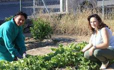 Cáritas Segovia imparte un curso de horticultura ecológica para desempleados