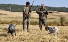 Cerca de 4.000 cazadores de la provincia se enfrentan a una temporada «floja»