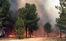 La Junta declara para este martes la alerta de incendios forestales en toda la Comunidad