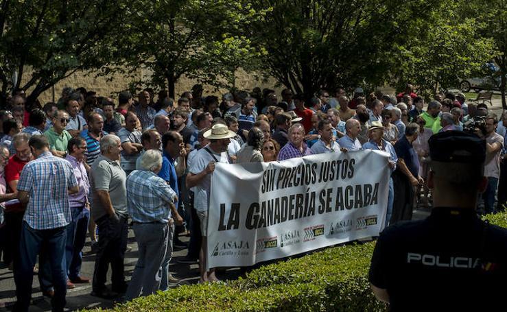 Manifestación de ganaderos en Valladolid