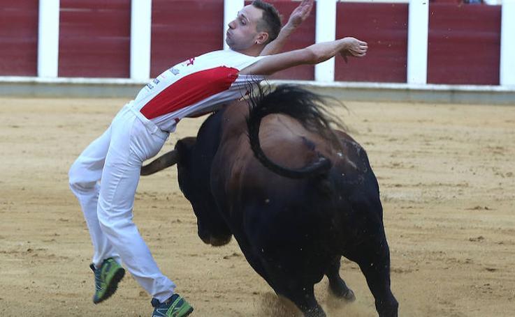 Final de la Liga de Corte Puro en Valladolid