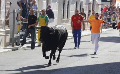 Encierros y música llenan de público las calles de Laguna de Duero