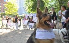 Concentración en Las Moreras para despedir al perro Cooper