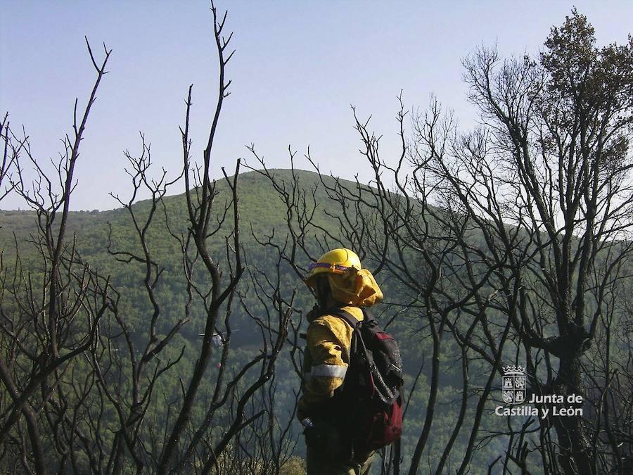 Cuatro fuegos se desencadenan en Ávila debido a los rayos