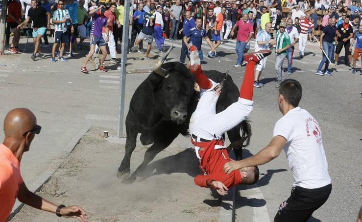 Encierro del Toro de la Vega en Tordesillas