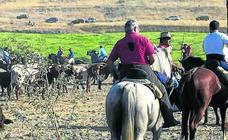 El cortador salmantino Héctor Sánchez se impone en Vallelado