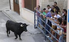 El toro vuelve a Astudillo