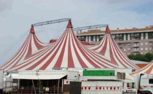 Herida una trapecista del circo de la Aldehuela tras caerse cuando realizaba su espectáculo