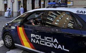 Investigados un padre y sus dos hijos por cultivar 450 plantas de marihuana en un solar abandonado de Valladolid