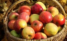 La manzana, la reina del postre castellano y leonés