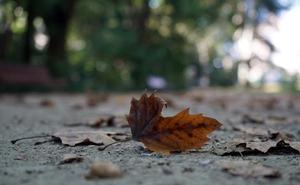 El otoño llegará a Valladolid con un intenso calor este domingo