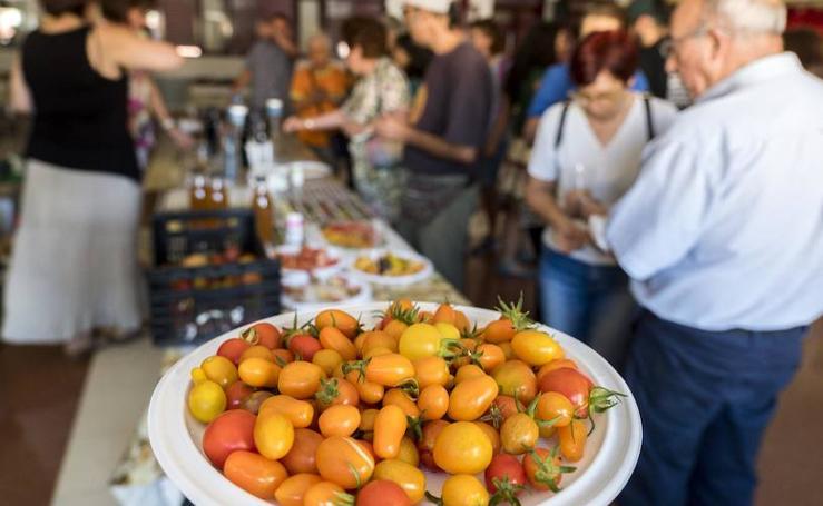 Cata de tomates en el Centro Cívico El Campillo