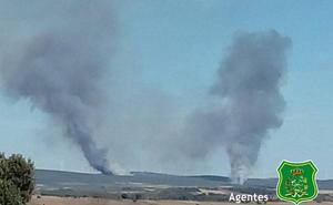 Activo un incendio forestal en el término municipal de Abejera, Zamora