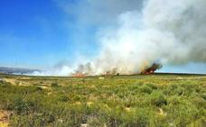 Controlado el incendio forestal en Abejera, Zamora, que ayer movilizó a numerosos medios aéreos y terrestres