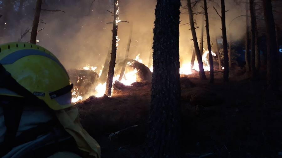 Un incendio intencionado en el Tiétar mantiene en vilo a numerosos medios hasta la noche