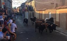 Mayorga inaugura sus fiestas con un multitudinario desfile de peñas y el primer encierro