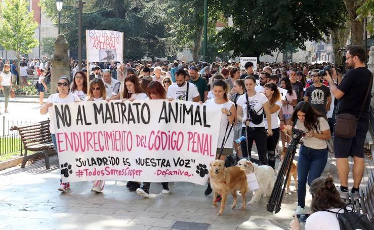 Cerca de 800 personas reclaman justicia para el perro Cooper en Valladolid