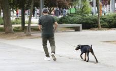 La Guardia Civil presenta 82 denuncias contra dueños de perros en Salamanca