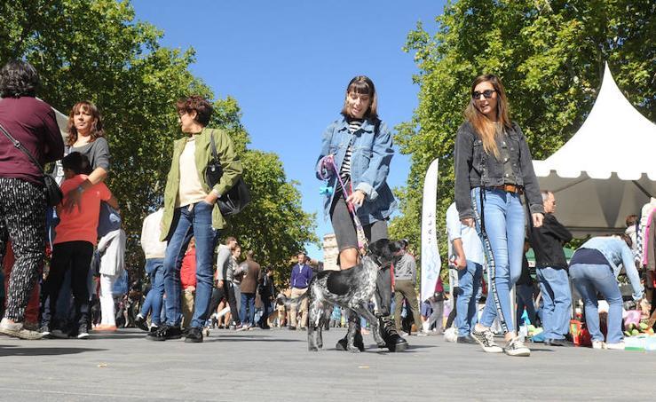 Día de las Mascotas en Valladolid