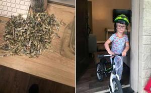 Un niño de dos años destruye los ahorros de sus padres al meterlos en una trituradora de papel
