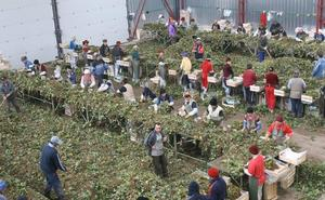 5.500 trabajadores están pendientes de la negociación de cuatro convenios