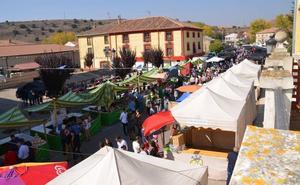 El Puente del Pilar llega a Palencia con todas estas actividades en la provincia