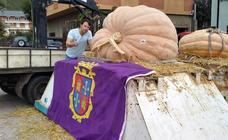 Una ejemplar de 600 kilos gana el Regional de Calabazas Gigantes