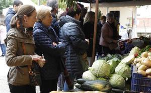 El reclamo de la cebolla horcal en Palenzuela