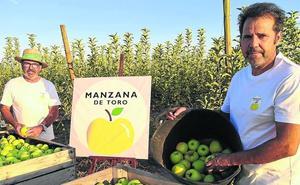 Los cultivos alternativos incorporan los manzanos en el entorno del Hornija