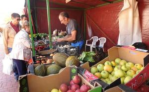 Medina del Campo reducirá sus ferias a la mitad para adaptarse a la demanda