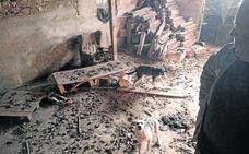 Hallados otros cinco animales muertos en la casa deshauciada de Roda de Eresma