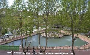 El Ayuntamiento de Salamanca trata los pinos de varios parques contra la procesionaria