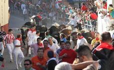 Los encierros de Cuéllar, los más antiguos de España, Premio Tauromaquia de Castilla y León