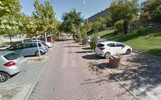 Detenido por el robo hasta en seis vehículos en los dos últimos meses en Valladolid