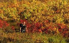 Los atractivos de El Bierzo en otoño atraen a cientos de turistas
