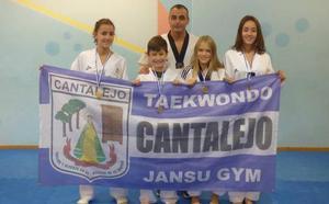 Pleno de medallas para el Jansu Gym en Mirandade Ebro