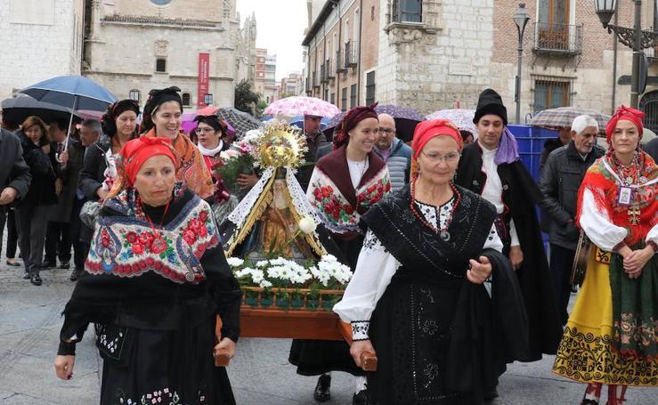 Procesión de la Virgen del Camino en Valladolid