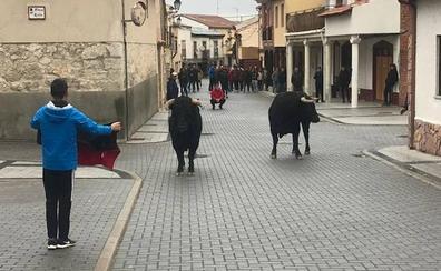 Traspinedo despide la XIV Festividad de San Martín sin incidentes graves