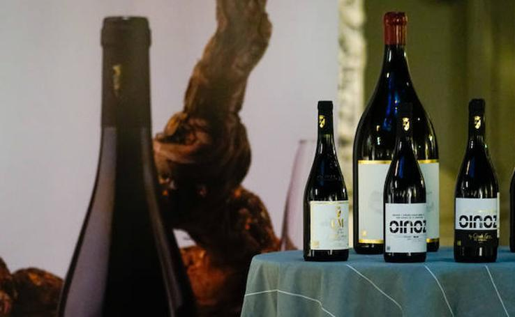 Matarromera presenta sus nuevos vinos en Salamanca