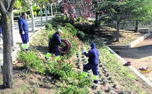 Un programa mixto permite a 16 jóvenes de Boecillo recuperar el parque El Tejar