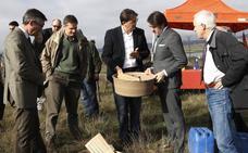 Una iniciativa holandesa repoblará con 21.000 árboles varios montes públicos del norte de Palencia