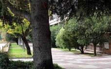 Adivina de qué calle de Valladolid se trata