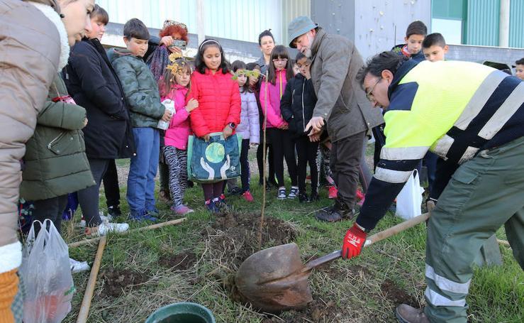 Plantación de árboles por los alumnos del CEIP Atalaya en Palazuelos de Eresma