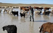 Mongolia, reserva de lagos