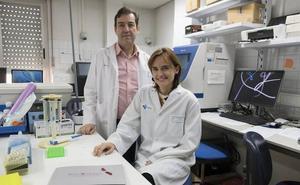 Investigadores salmantinos abordan «uno de los linfomas más agresivos»