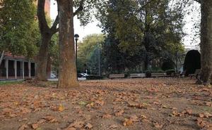 El servicio de limpieza recoge en Valladolid un máximo de 45.000 kilos de hojas en un día